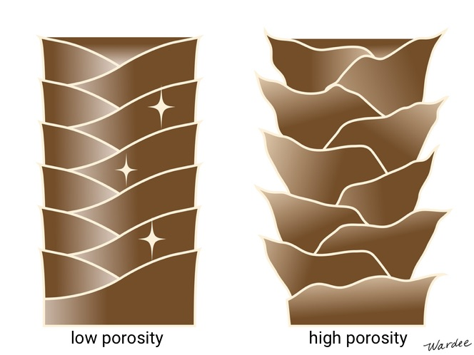 Graphic of two hair strands. One where the pores are tight and closed, the other where they stick out further.