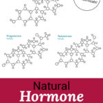 "artistic rendering of three sex hormone molecules: testosterone, estrogen, and progesterone. Text overlay says: ""Natural Balance Hormones For Women (including diet, exercise & bio-identicals!)"""