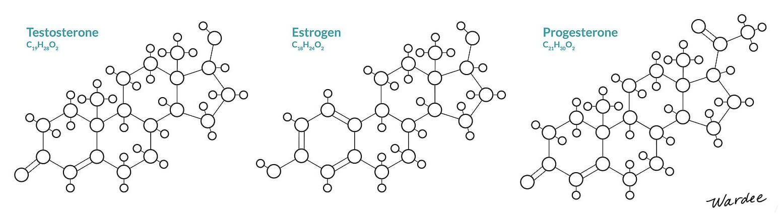 artistic visual rendering of three sex hormone molecules: testosterone, estrogen, and progesterone