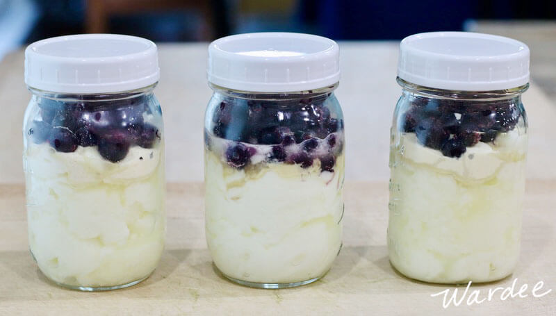 Three pint-sized glass jars of yogurt topped with blueberries.